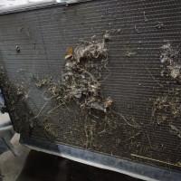 Мойка радиаторов автомобиля